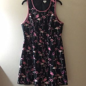 Crown & Ivy flamingo fit and flare